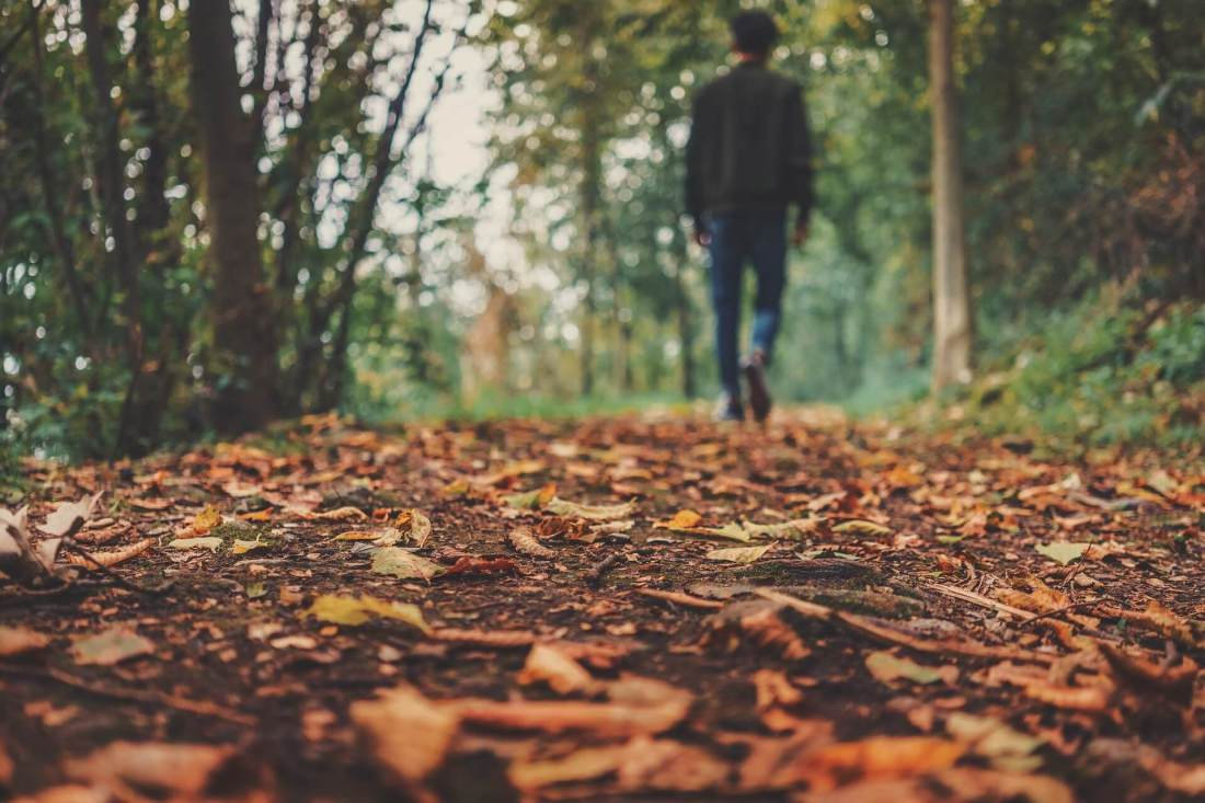 Man walking through forest path during fall